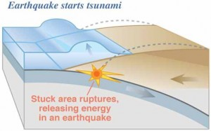 Tsunamis For Kids